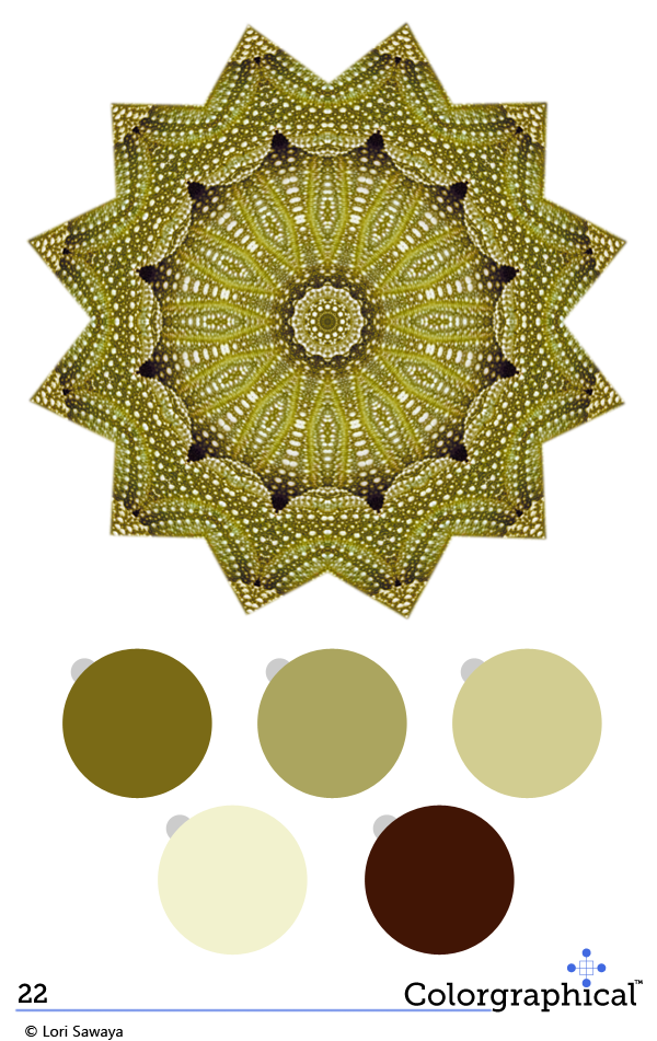 color inspiration c2 paint paint 22 swatch right