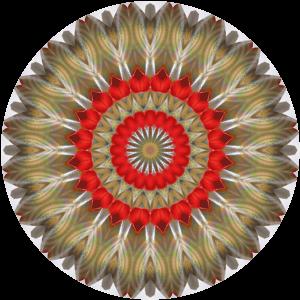 Opal Kaleidodala